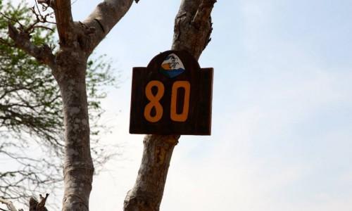 lot-80